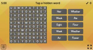 words search homophones game