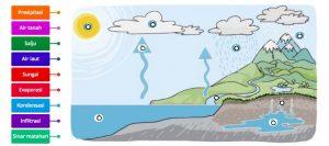 Latihan Soal Proses Siklus Air