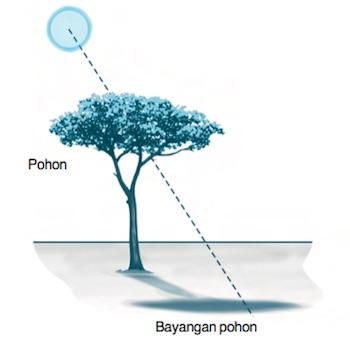 sifat-sifat cahaya dan contohnya